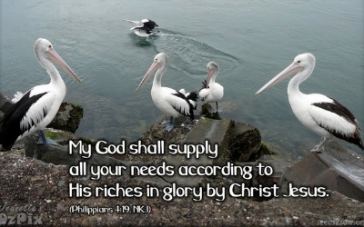 Phil4 19 my God shall supply all your needs